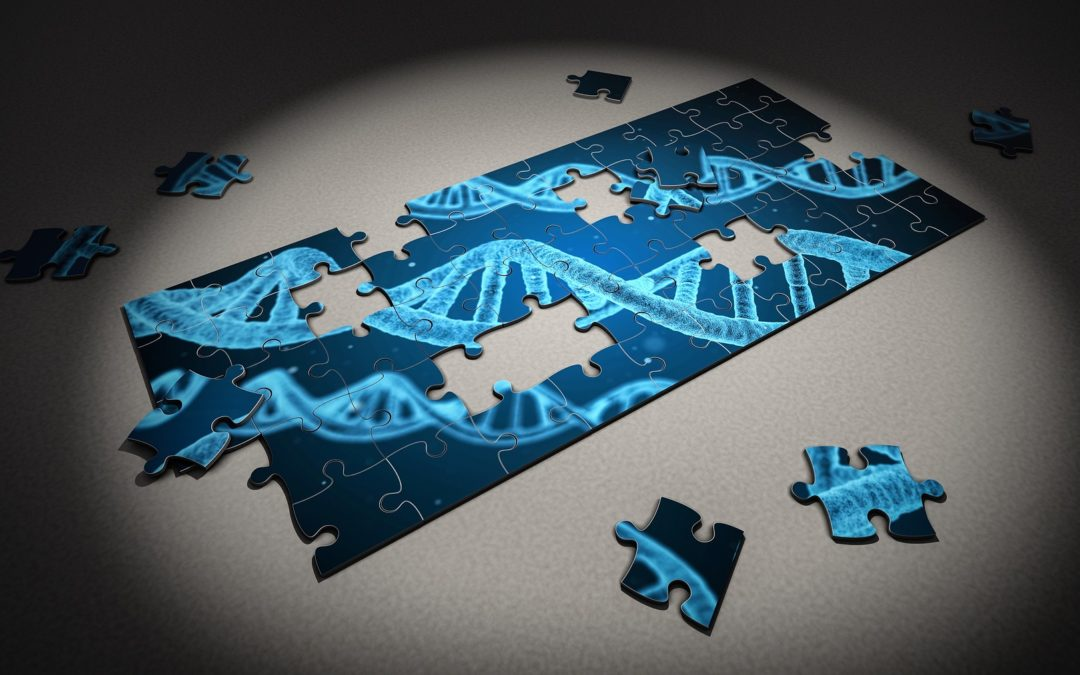 How Does SNP Genotyping Work?