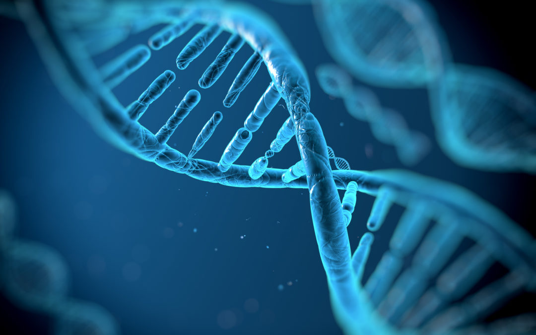 DNA Test Cost in South Africa